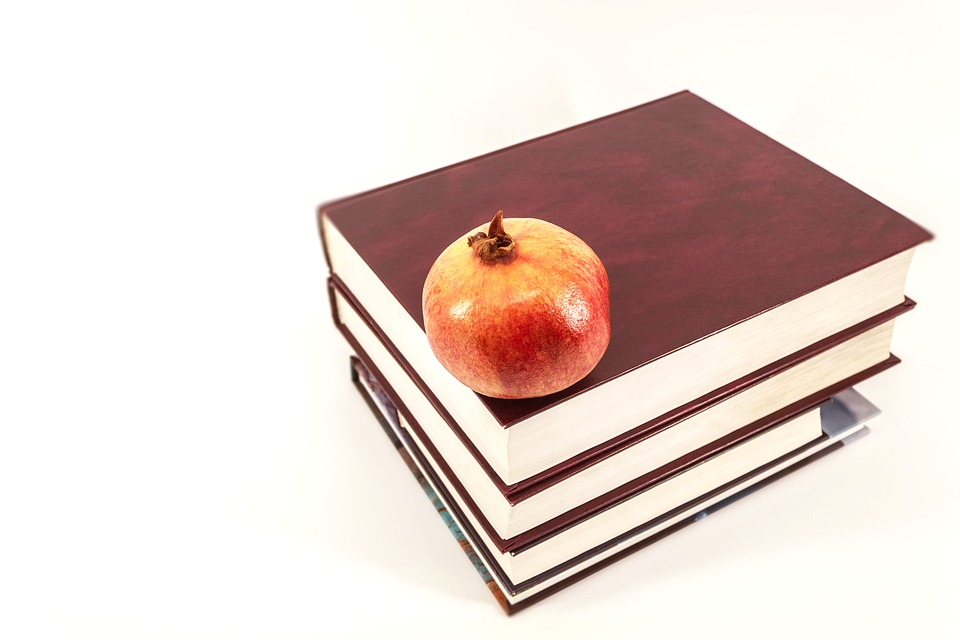 INICIA PROCESO DE SELECCIÓN PARA ADMISIÓN EN EDUCACIÓN BÁSICA