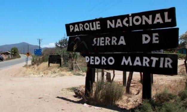 ESTE DOMINGO 8 REABRIRÁ EL PARQUE NACIONAL DE SAN PEDRO MÁRTIR