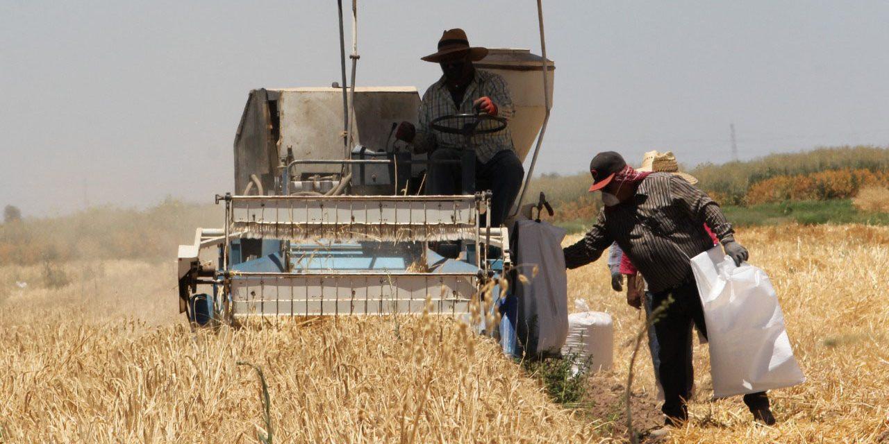 PROMUEVEN CAPACITACIÓN A EMPRESAS AGROPECUARIAS EN MATERIA LABORAL